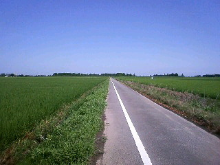 荒川の風景(仮設自転車道)