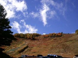 上はすっかり秋の色
