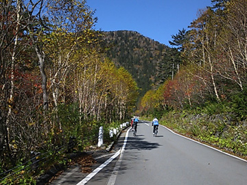 ロード以外にも、折りたたみ自転車で登られている方とか多かったですネェ