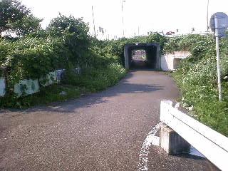 上江橋をくぐります