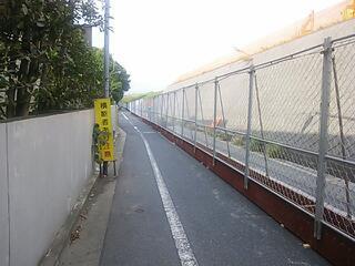 戸田橋下流の工事区間の迂回路の車道には、こんな感じの所もっ