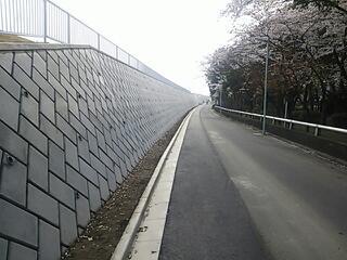 浮間公園脇の道